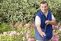 A photo of a man raking leaves in a garden