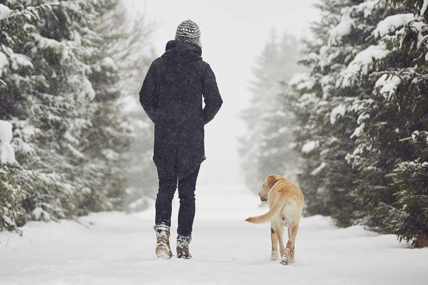 A photo of a boy and his dog walking in the snow