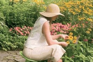 A woman in a floppy hat tend to flowers in a garden